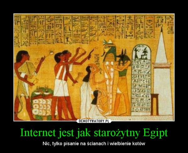 Internet jest jak starożytny Egipt – Nic, tylko pisanie na ścianach i wielbienie kotów