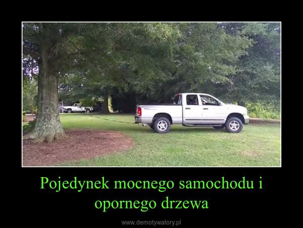 Pojedynek mocnego samochodu i opornego drzewa –