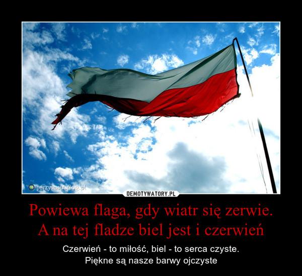 Powiewa flaga, gdy wiatr się zerwie.A na tej fladze biel jest i czerwień – Czerwień - to miłość, biel - to serca czyste.Piękne są nasze barwy ojczyste