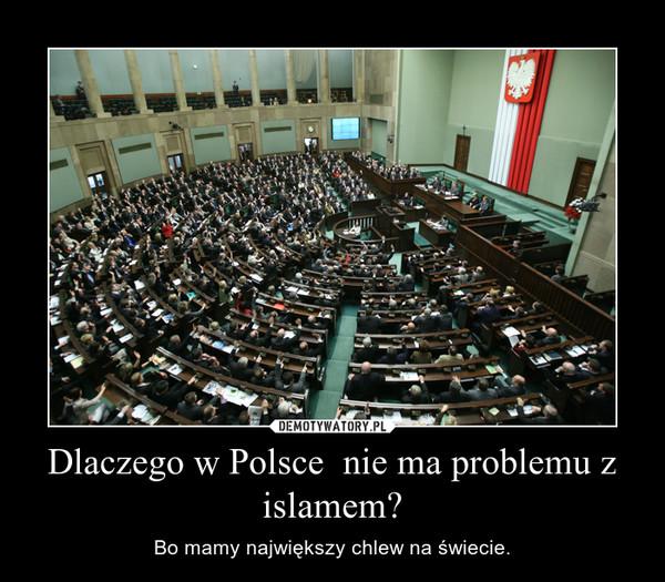 Dlaczego w Polsce  nie ma problemu z islamem? – Bo mamy największy chlew na świecie.