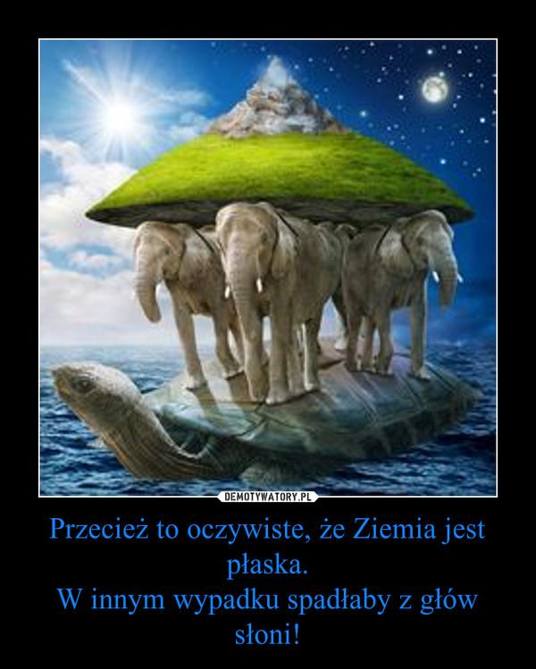 Przecież to oczywiste, że Ziemia jest płaska.W innym wypadku spadłaby z głów słoni! –