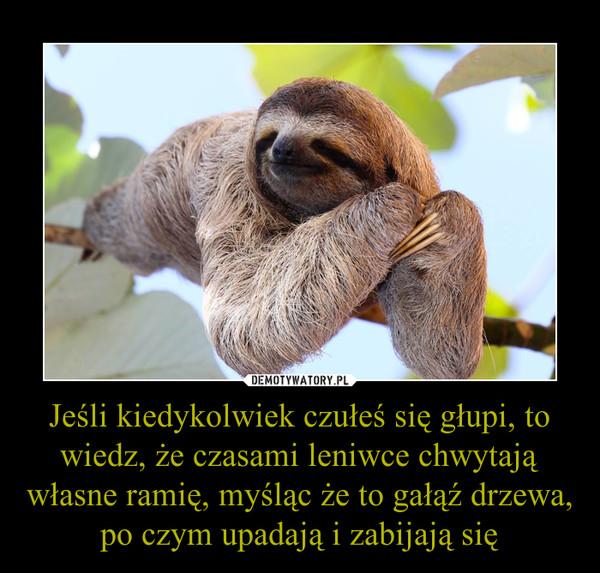 Jeśli kiedykolwiek czułeś się głupi, to wiedz, że czasami leniwce chwytają własne ramię, myśląc że to gałąź drzewa, po czym upadają i zabijają się –