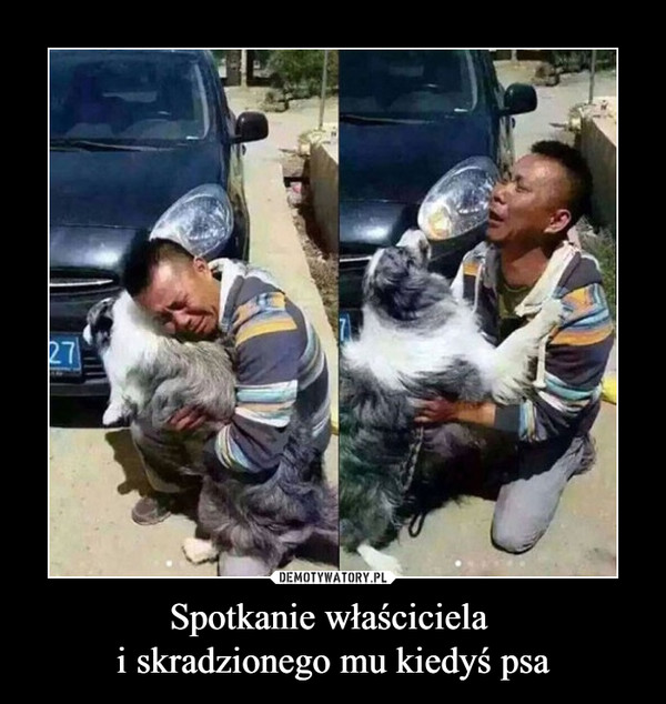 Spotkanie właściciela i skradzionego mu kiedyś psa –