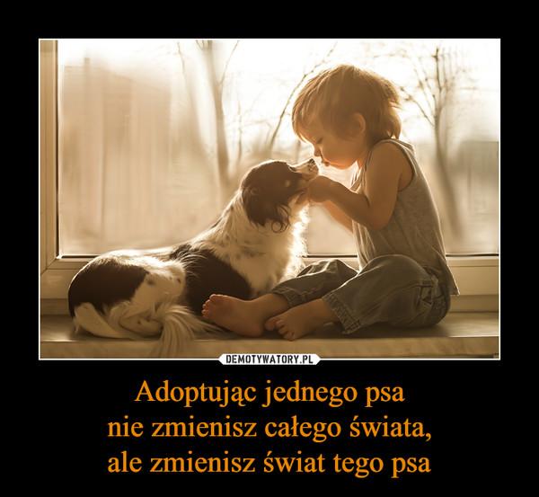 Adoptując jednego psanie zmienisz całego świata,ale zmienisz świat tego psa –