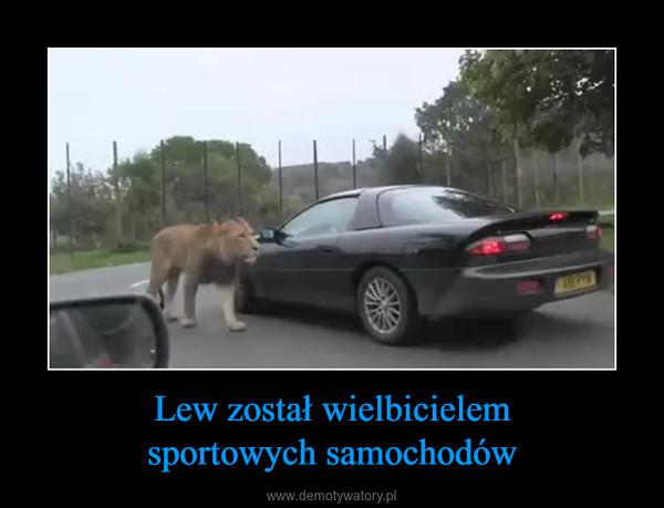 Lew został wielbicielemsportowych samochodów –