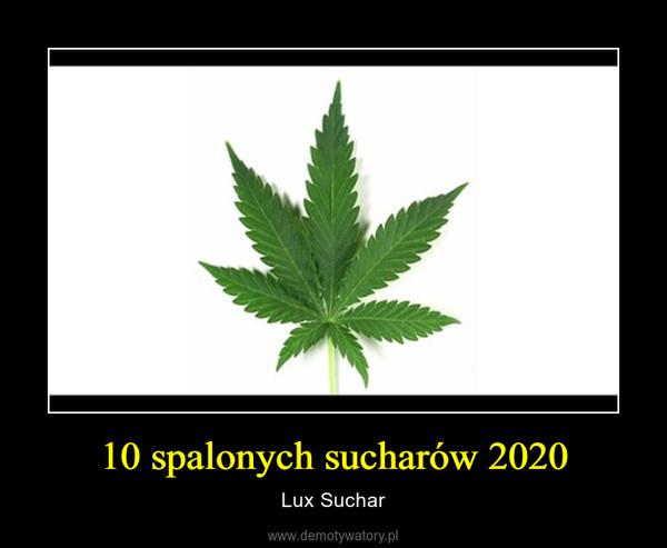 10 spalonych sucharów 2020 – Lux Suchar