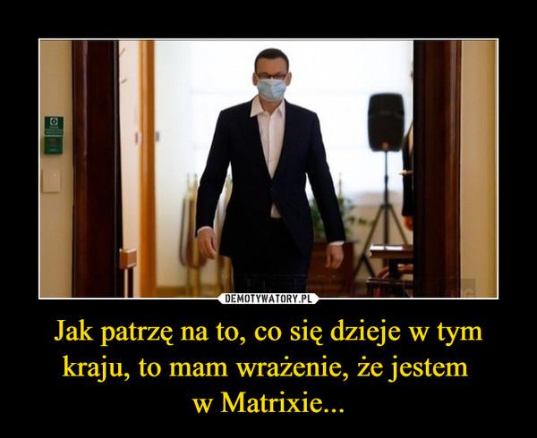 Jak patrzę na to, co się dzieje w tym kraju, to mam wrażenie, że jestem w Matrixie... –