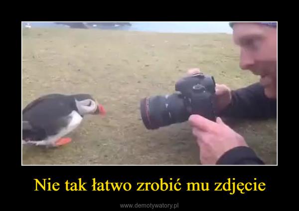 Nie tak łatwo zrobić mu zdjęcie –
