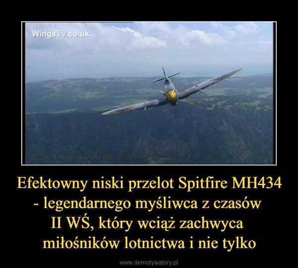 Efektowny niski przelot Spitfire MH434 - legendarnego myśliwca z czasów II WŚ, który wciąż zachwyca miłośników lotnictwa i nie tylko –