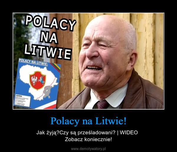 Polacy na Litwie! – Jak żyją?Czy są prześladowani?   WIDEO  Zobacz koniecznie!