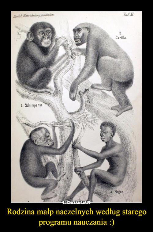 Rodzina małp naczelnych według starego programu nauczania :)