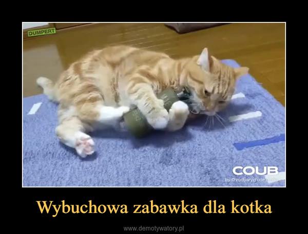 Wybuchowa zabawka dla kotka –