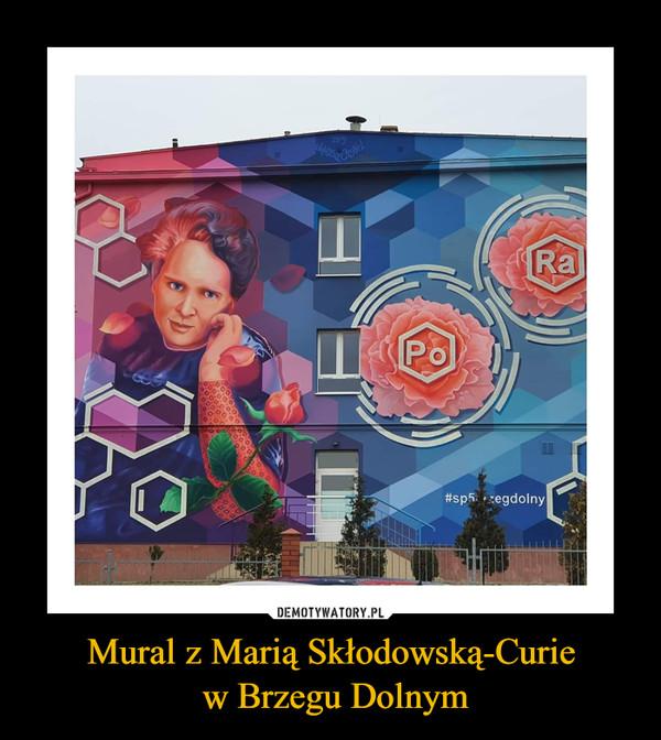 Mural z Marią Skłodowską-Curie w Brzegu Dolnym –
