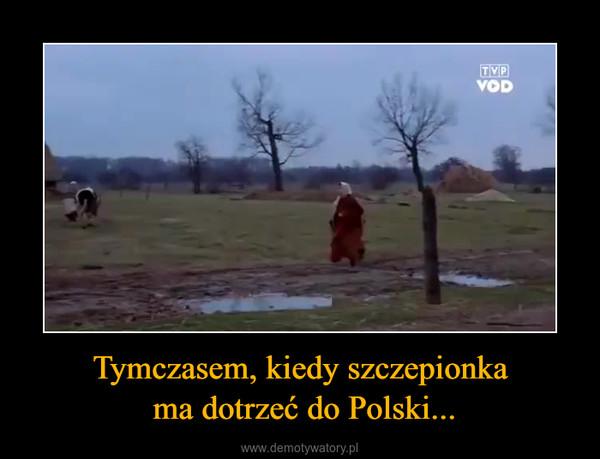Tymczasem, kiedy szczepionka ma dotrzeć do Polski... –