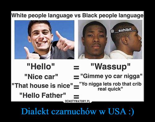 Dialekt czarnuchów w USA :)