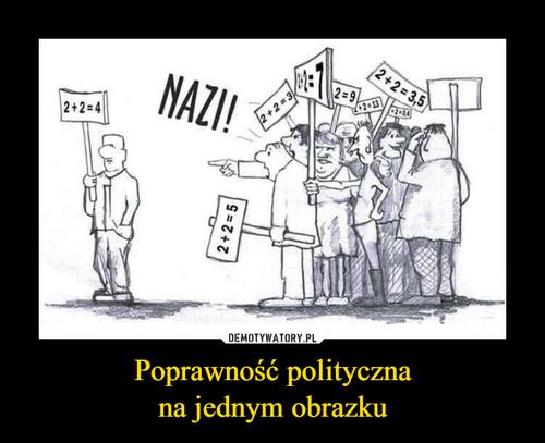 Poprawność polityczna na jednym obrazku