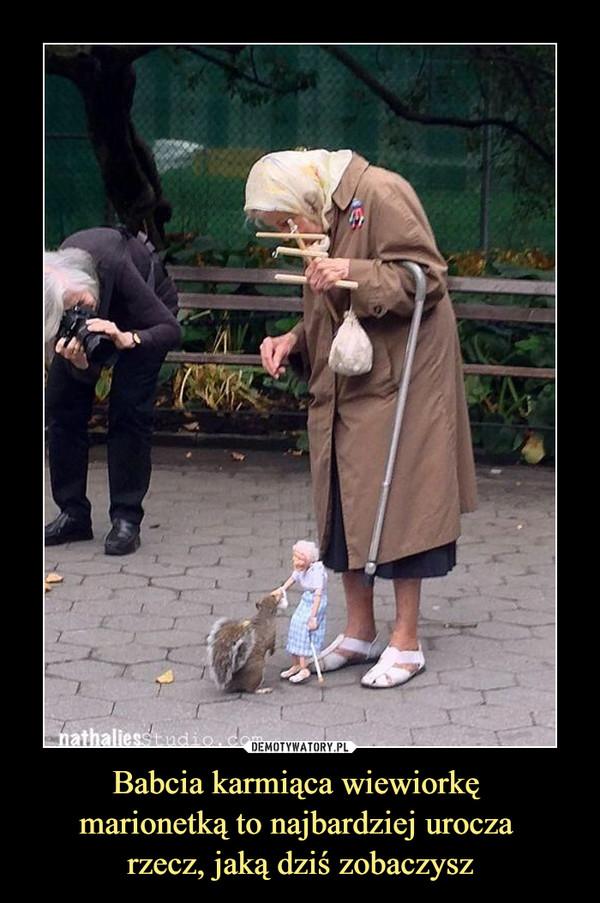 Babcia karmiąca wiewiorkę marionetką to najbardziej urocza rzecz, jaką dziś zobaczysz –