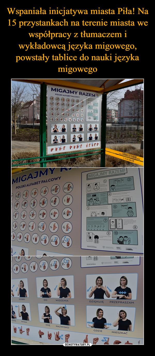 Wspaniała inicjatywa miasta Piła! Na 15 przystankach na terenie miasta we współpracy z tłumaczem i wykładowcą języka migowego, powstały tablice do nauki języka migowego