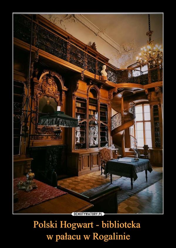 Polski Hogwart - biblioteka w pałacu w Rogalinie –