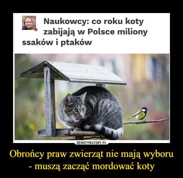 Obrońcy praw zwierząt nie mają wyboru - muszą zacząć mordować koty –  Naukowcy: co roku kotyzabijają w Polsce milionyssaków i ptaków