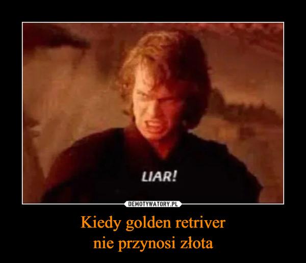 Kiedy golden retrivernie przynosi złota –