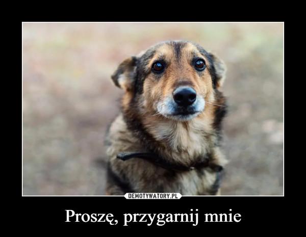Proszę, przygarnij mnie –