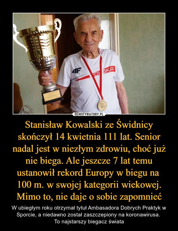 Stanisław Kowalski ze Świdnicy skończył 14 kwietnia 111 lat. Senior nadal jest w niezłym zdrowiu, choć już nie biega. Ale jeszcze 7 lat temu ustanowił rekord Europy w biegu na 100 m. w swojej kategorii wiekowej. Mimo to, nie daje o sobie zapomnieć – W ubiegłym roku otrzymał tytuł Ambasadora Dobrych Praktyk w Sporcie, a niedawno został zaszczepiony na koronawirusa. To najstarszy biegacz świata