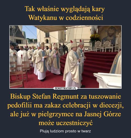 Tak właśnie wyglądają kary  Watykanu w codzienności Biskup Stefan Regmunt za tuszowanie pedofilii ma zakaz celebracji w diecezji, ale już w pielgrzymce na Jasnej Górze może uczestniczyć