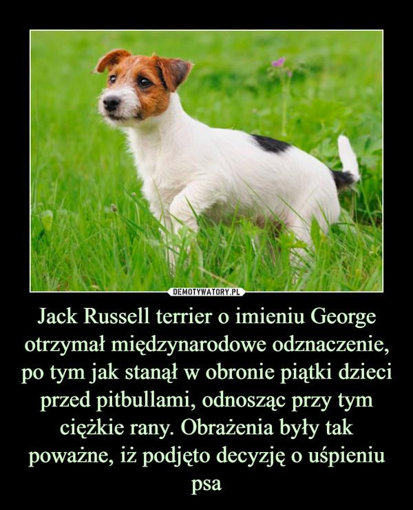 Jack Russell terrier o imieniu George otrzymał międzynarodowe odznaczenie, po tym jak stanął w obronie piątki dzieci przed pitbullami, odnosząc przy tym ciężkie rany. Obrażenia były tak poważne, iż podjęto decyzję o uśpieniu psa –