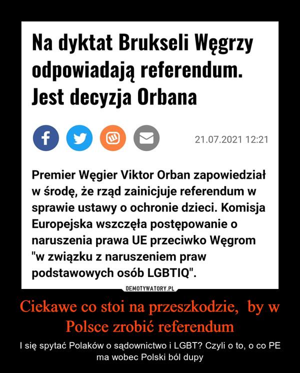 Ciekawe co stoi na przeszkodzie,  by w Polsce zrobić referendum – I się spytać Polaków o sądownictwo i LGBT? Czyli o to, o co PE ma wobec Polski ból dupy