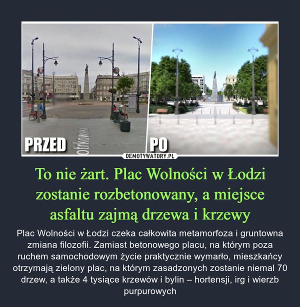 To nie żart. Plac Wolności w Łodzi zostanie rozbetonowany, a miejsce asfaltu zajmą drzewa i krzewy – Plac Wolności w Łodzi czeka całkowita metamorfoza i gruntowna zmiana filozofii. Zamiast betonowego placu, na którym poza ruchem samochodowym życie praktycznie wymarło, mieszkańcy otrzymają zielony plac, na którym zasadzonych zostanie niemal 70 drzew, a także 4 tysiące krzewów i bylin – hortensji, irg i wierzb purpurowych
