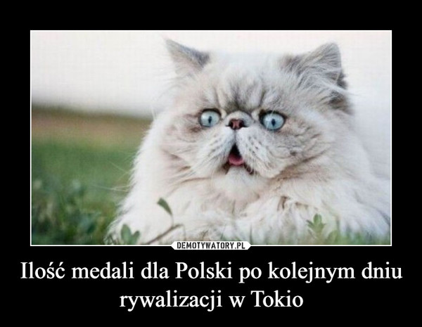Ilość medali dla Polski po kolejnym dniu rywalizacji w Tokio –