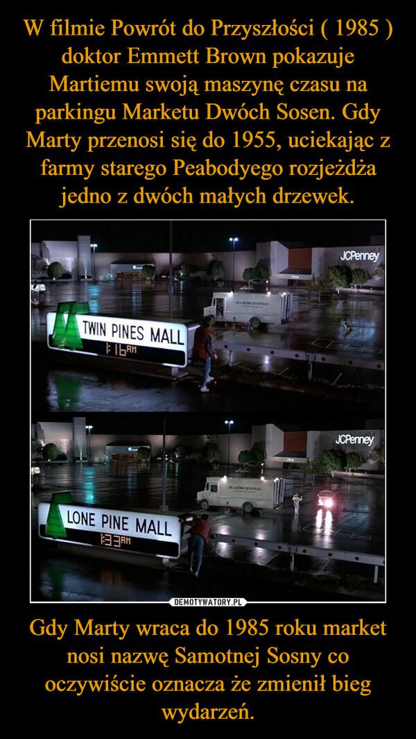 W filmie Powrót do Przyszłości ( 1985 ) doktor Emmett Brown pokazuje Martiemu swoją maszynę czasu na parkingu Marketu Dwóch Sosen. Gdy Marty przenosi się do 1955, uciekając z farmy starego Peabodyego rozjeżdża jedno z dwóch małych drzewek. Gdy Marty wraca do 1985 roku market nosi nazwę Samotnej Sosny co oczywiście oznacza że zmienił bieg wydarzeń.