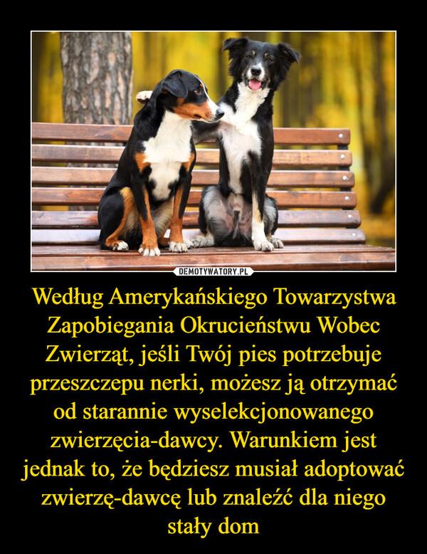 Według Amerykańskiego Towarzystwa Zapobiegania Okrucieństwu Wobec Zwierząt, jeśli Twój pies potrzebuje przeszczepu nerki, możesz ją otrzymać od starannie wyselekcjonowanego zwierzęcia-dawcy. Warunkiem jest jednak to, że będziesz musiał adoptować zwierzę-dawcę lub znaleźć dla niego stały dom –