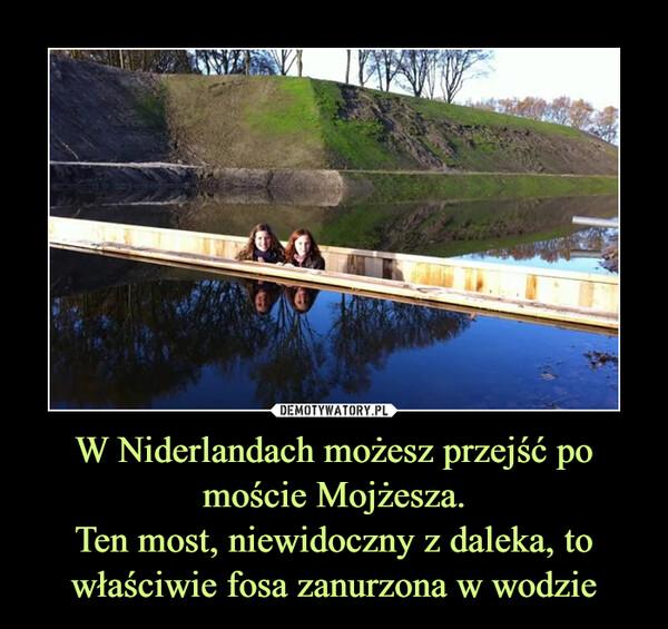W Niderlandach możesz przejść po moście Mojżesza.Ten most, niewidoczny z daleka, to właściwie fosa zanurzona w wodzie –