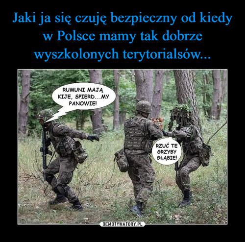 Jaki ja się czuję bezpieczny od kiedy w Polsce mamy tak dobrze wyszkolonych terytorialsów...