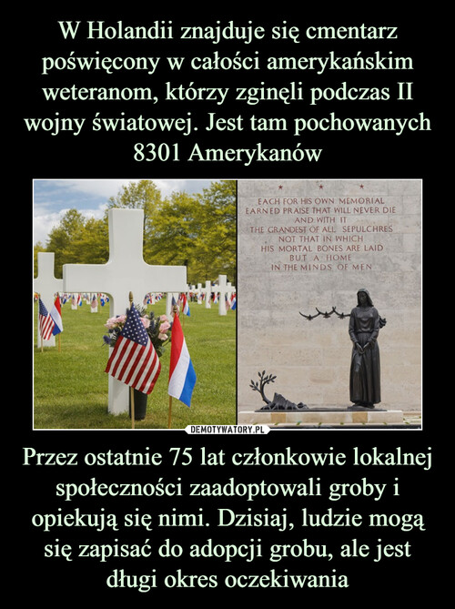 W Holandii znajduje się cmentarz poświęcony w całości amerykańskim weteranom, którzy zginęli podczas II wojny światowej. Jest tam pochowanych 8301 Amerykanów Przez ostatnie 75 lat członkowie lokalnej społeczności zaadoptowali groby i opiekują się nimi. Dzisiaj, ludzie mogą się zapisać do adopcji grobu, ale jest długi okres oczekiwania
