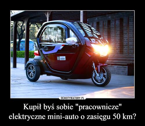 """Kupił byś sobie """"pracownicze"""" elektryczne mini-auto o zasięgu 50 km?"""