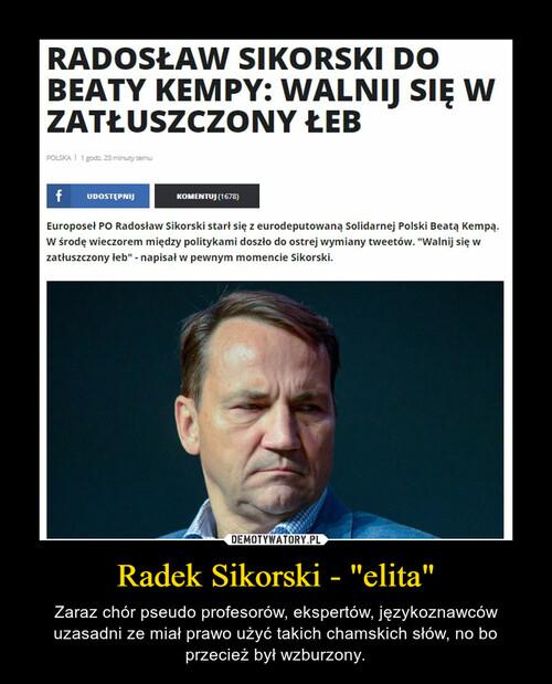 "Radek Sikorski - ""elita"""